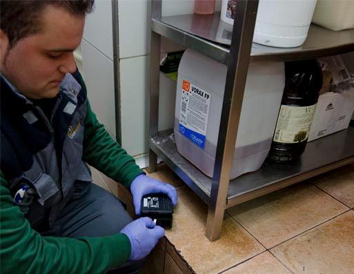 Empresas de control de plagas en Murcia