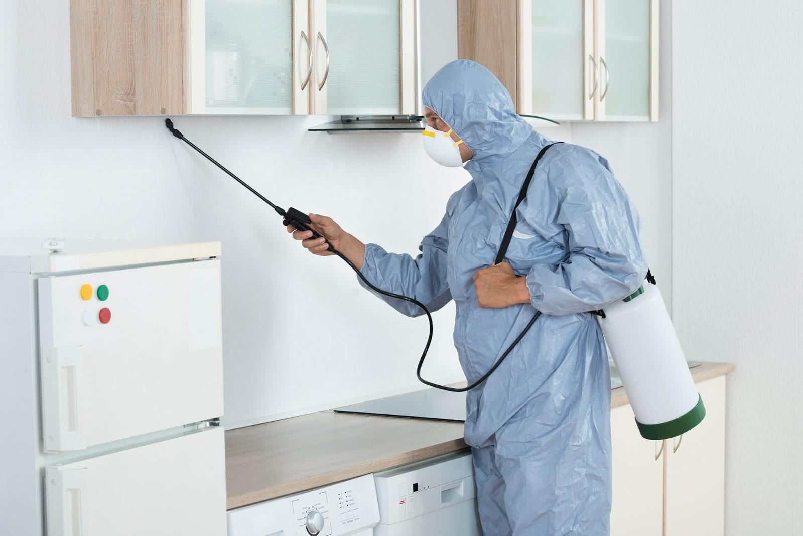 empresas de control de plagas y desinfeccion en murcia