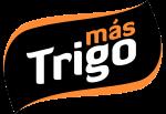 mastrigo-e1512400482888
